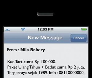 SMS Masking Murah di Papua